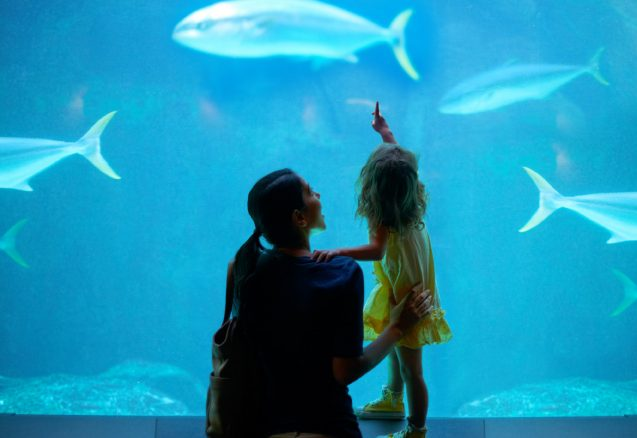 A picture of a mother and daughter looking at fish.